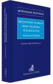 Mechanizmy ochrony praw człowieka w ramach ONZ. Analiza systemowa